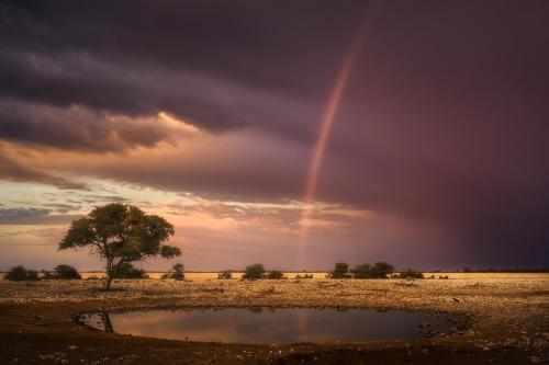 Awakening in Namibia-low res Hasselblad X1D (1)