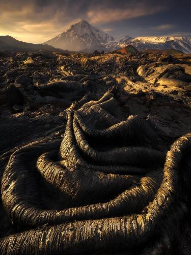 Bowel of Earth by Isabella Tabacchi