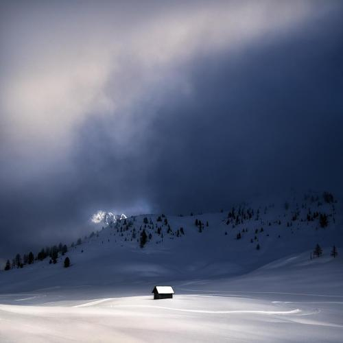 Lonely in the Alps by Isabella Tabacchi